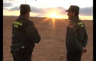 15 Detenidos en la provincia de Albacete