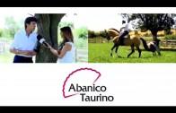 Abanico Taurino programa 24