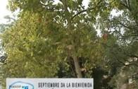 Actualidad Semanal día 27 septiembre 2014