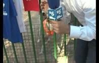 Albacete acoge la primera quedada de lebreles en el Parque Abelardo Sánchez