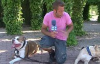 APDC Adiestrador Canino