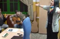 APDC Flamenco
