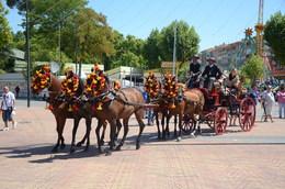 Coche de caballos en feria