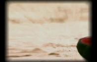 El percal (Promo)