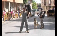 Exhibición de la Unidad Canina de la Base…a pie de calle