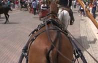 Feria Ecuestre 080913