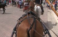 Feria Ecuestre de Albacete 2008
