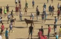 Gente en Feria día 8 septiembre 2014