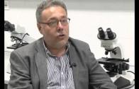 La facultad de medicina de Albacete, primera en resultados MIR
