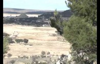 Vendimia que se adelanta…pero no en La Mancha