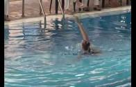 Albacete acogió el octavo Open de natación sincronizada de CLM