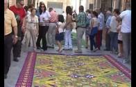 Las alfombras de Elche de la Sierra buscan proyección internacional