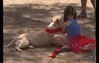 Éxito del primer encuentro canino de Albacete