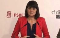 El Psoe muestra en Albacete su programa electoral