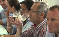Nueva edición de la Misión Comercial Inversa de Vinos