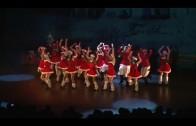 Especial Nochevieja Gala Broadway-ACEPAIN