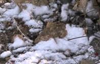¿Cuajará en Albacete la nieve?