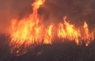 Un medio terrestre continúa trabajando en el incendio de Valdeganga