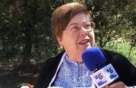 Romería en honor a San Isidro Labrador en Pozo Cañada