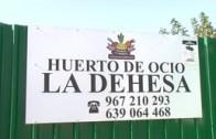 """Al Fresco reportaje """"Huertos ecológicos"""""""
