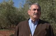 El funeral de Borja Aybar en la más estricta intimidad