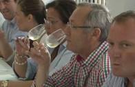 Carta de vinos para fomentar el turismo en la provincia