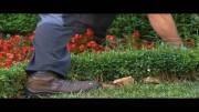 """Al Fresco reportaje """"Jardines"""""""