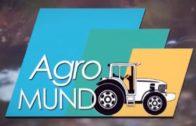 Agromundo 7 (Albaricoques) 13 de mayo de 2017