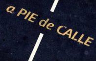 "A Pie de Calle reportaje ""Fitur 2018 Madrigueras"""