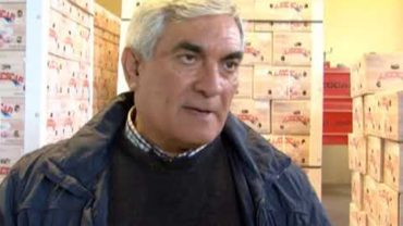 Los ajos de China siguen siendo una amenaza para los productores de Albacete y Castilla-La Mancha