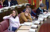 Los presupuestos de Albacete son un «bluf»