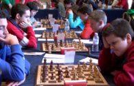 Unos 250 ajedrecistas compiten en el regional de Albacete