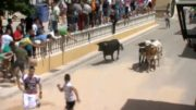 A Pie de Calle reportaje Fiestas de Pozohondo San Juan 2018