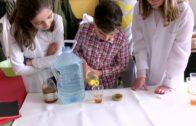 La ciencia llena las aulas del IES Andrés de Vandelvira