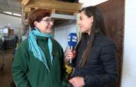 Agromundo Reportaje 'Almendros tardíos' 2 marzo 2019