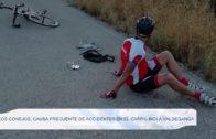 Los conejos, causa frecuente de accidentes en el carril-bici a Valdeganga