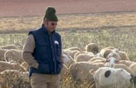 Albacete registra 7 detenidos en lo que llevamos de cuarentena