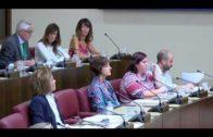 Cruce de acusaciones en el Pleno municipal de Albacete