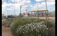 16 municipios de Albacete se integran en el mapa del suelo industrial