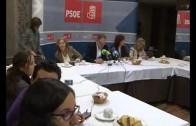 Balance anual PSOE