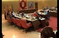 Emisalba y las terrazas a debate en el pleno