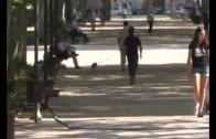 Los parques urbanos, un refugio para evitar el calor