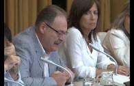 Respaldo del PP municipal a la elección directa de alcaldes