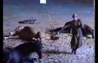 Santi Serra en la finca Los Prados
