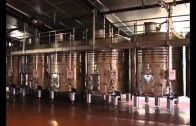 Villarrobledo acoge la IX misión inversa del vino