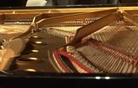 APDC pianistas