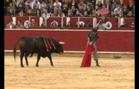 Corrida de toros a beneficio de Cáritas y el Cotolengo