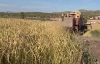 Albacete no pagará mas de un millón de euros por beber agua del Jucar
