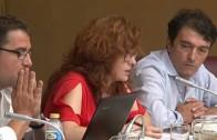 Aprobada la retirada de las competencias de mujer a la concejala