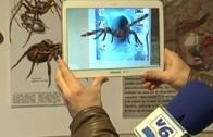 APDC Reportaje Muestra 3D